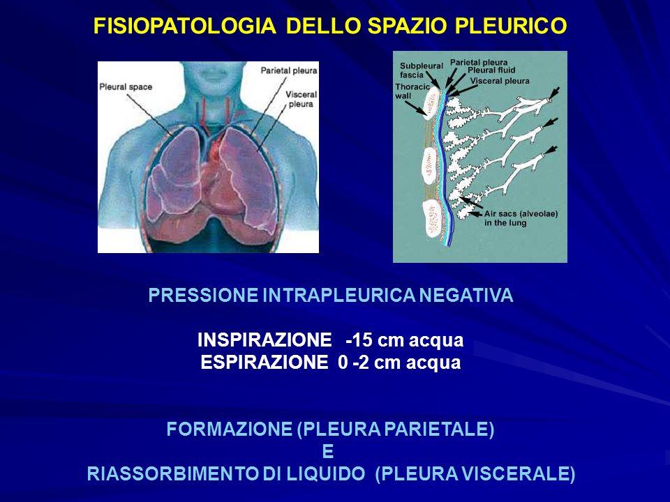 FISIOPATOLOGIA DELLO SPAZIO PLEURICO