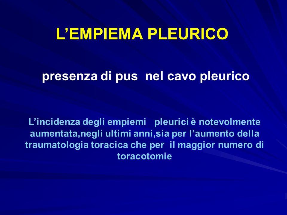 presenza di pus nel cavo pleurico