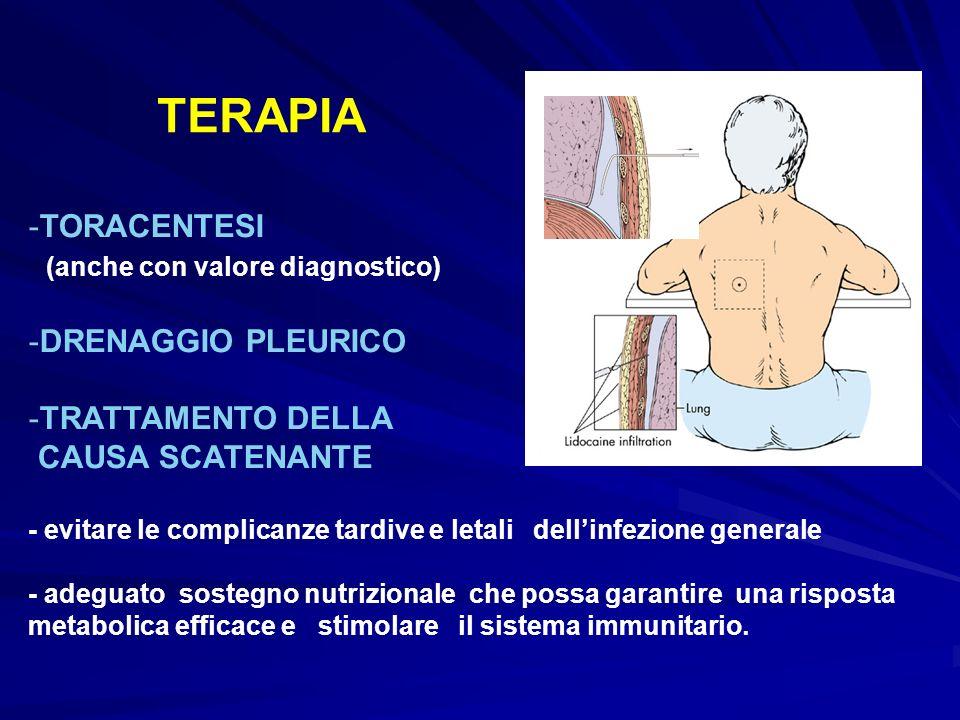 TERAPIA TORACENTESI (anche con valore diagnostico) DRENAGGIO PLEURICO