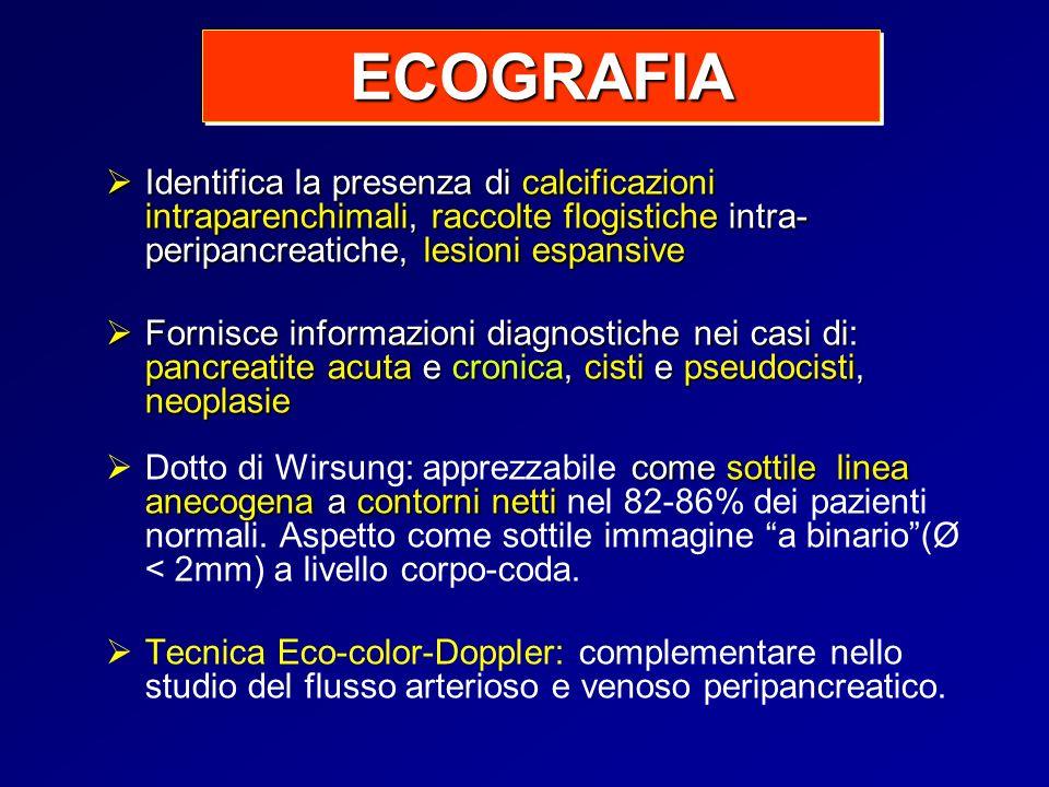 ECOGRAFIA Identifica la presenza di calcificazioni intraparenchimali, raccolte flogistiche intra-peripancreatiche, lesioni espansive.