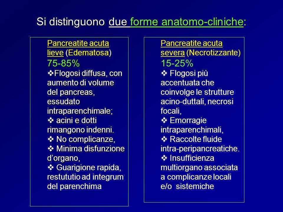 Si distinguono due forme anatomo-cliniche: