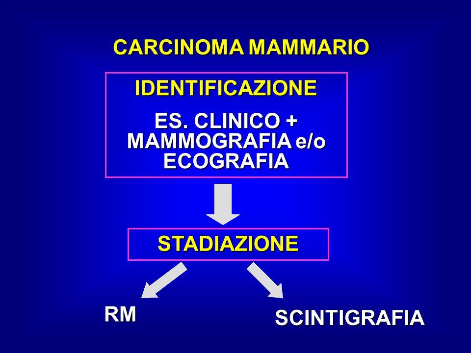 ES. CLINICO + MAMMOGRAFIA e/o ECOGRAFIA