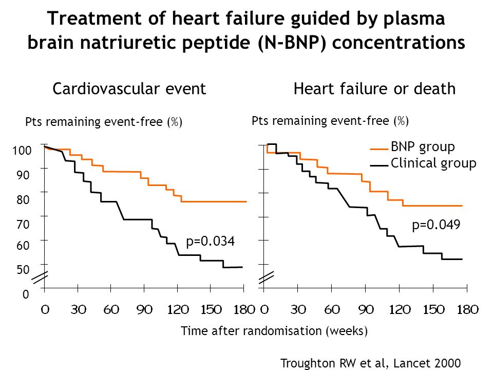 Treatment of heart failure guided by plasma brain natriuretic peptide (N-BNP) concentrations
