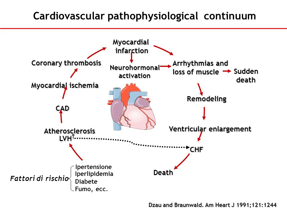 Cardiovascular pathophysiological continuum