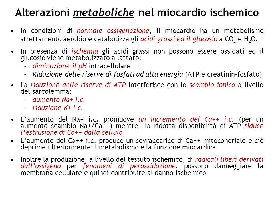 Alterazioni metaboliche nel miocardio ischemico