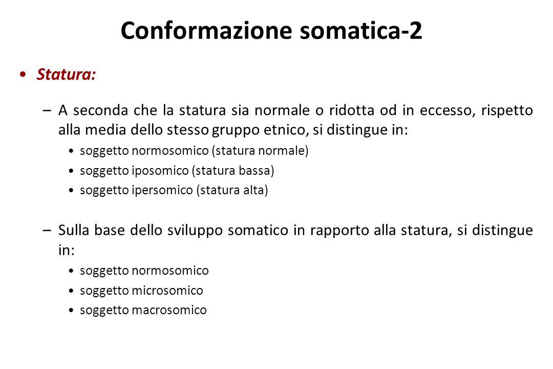 Conformazione somatica-2