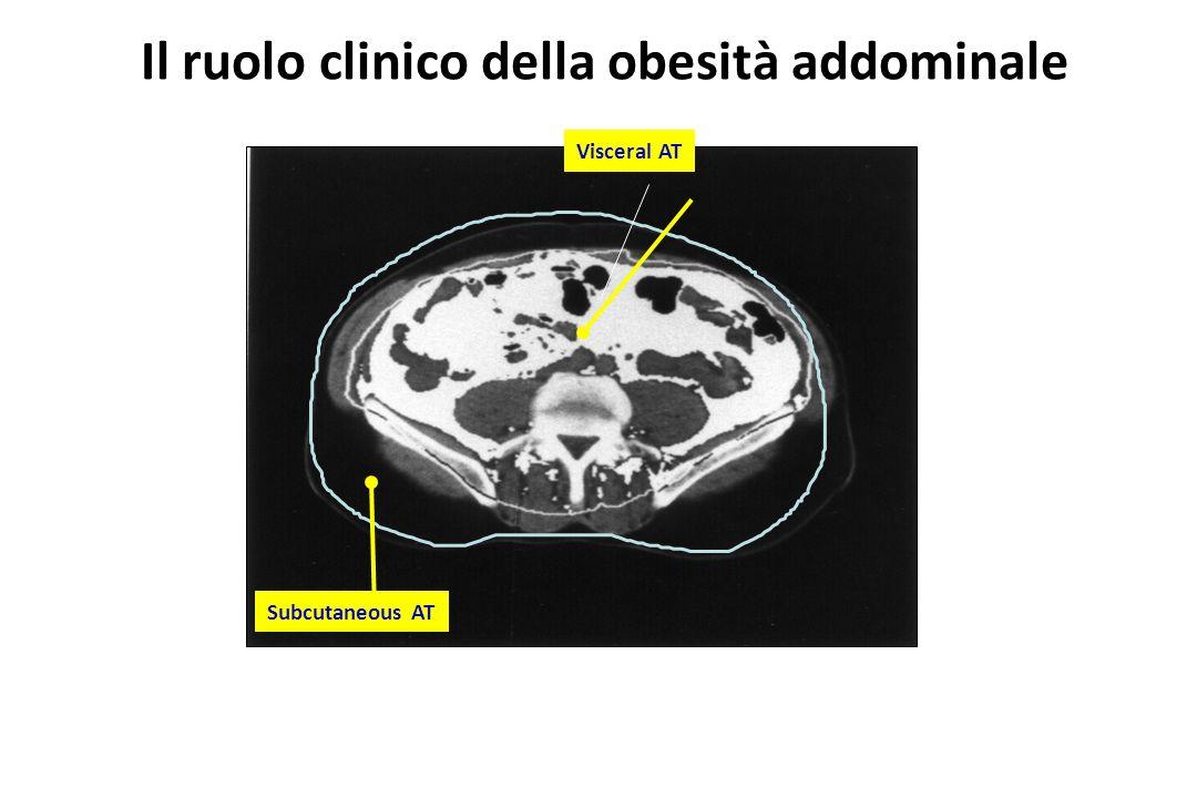 Il ruolo clinico della obesità addominale