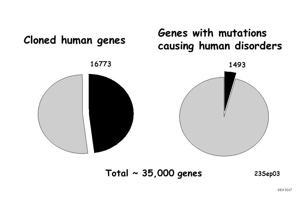 causing human disorders Cloned human genes