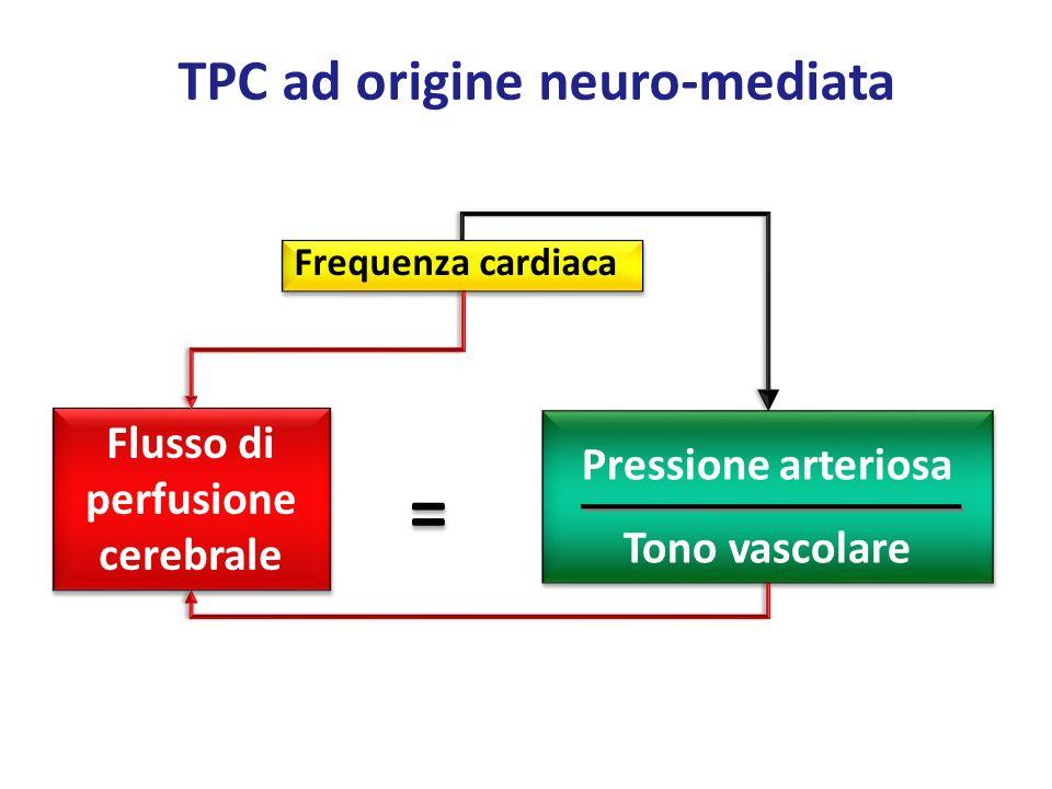 = TPC ad origine neuro-mediata Flusso di perfusione cerebrale