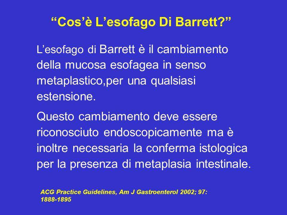 Cos'è L'esofago Di Barrett