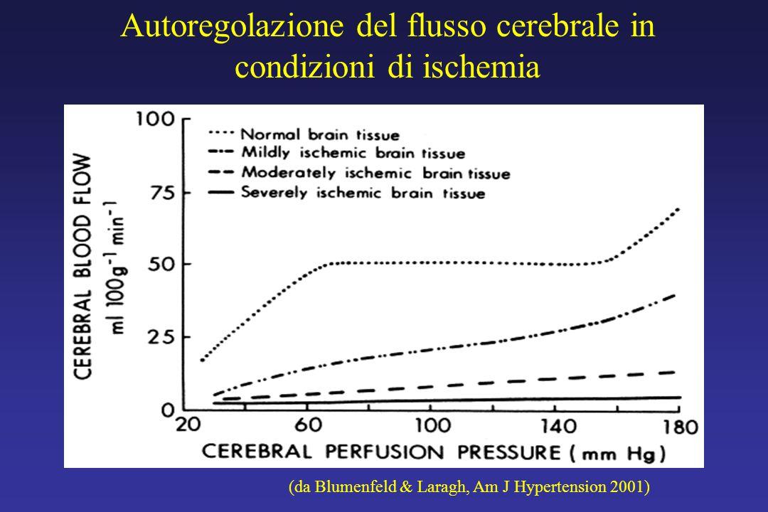 Autoregolazione del flusso cerebrale in condizioni di ischemia