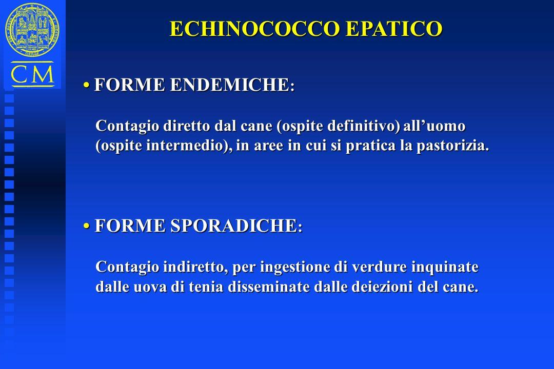 ECHINOCOCCO EPATICO • FORME ENDEMICHE: • FORME SPORADICHE: