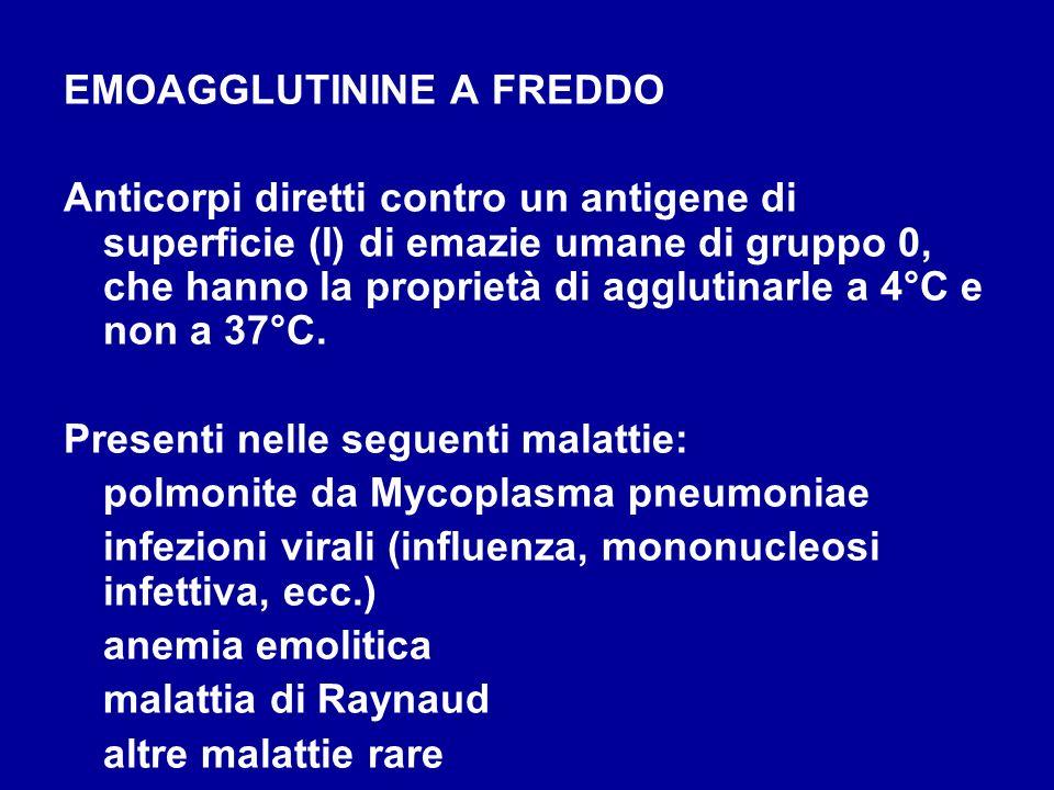 EMOAGGLUTININE A FREDDO