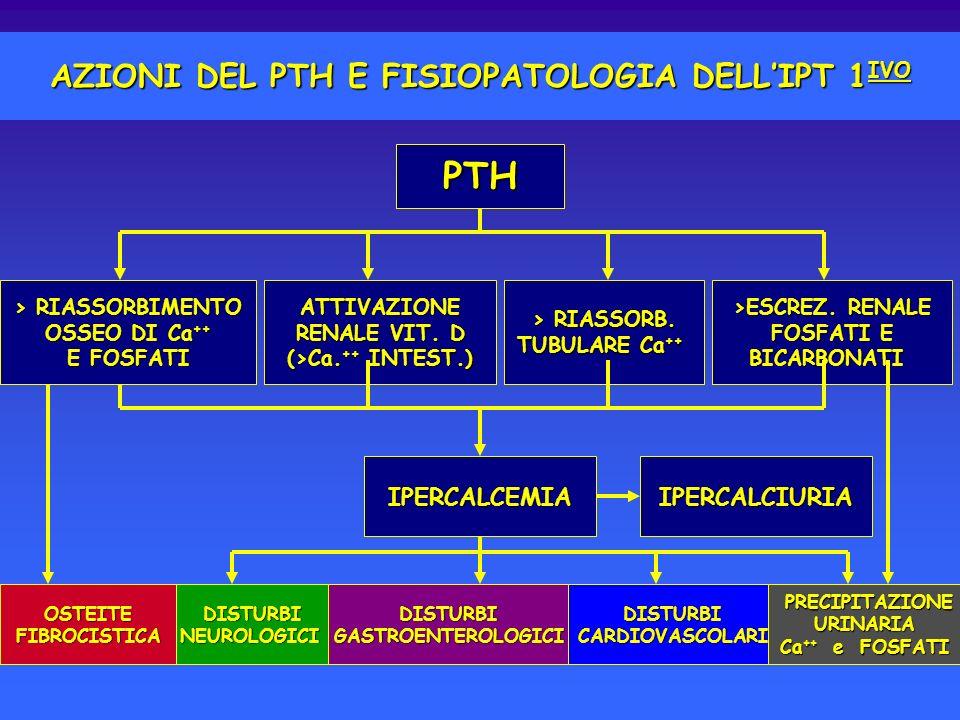 AZIONI DEL PTH E FISIOPATOLOGIA DELL'IPT 1IVO