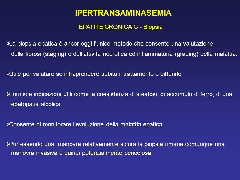 IPERTRANSAMINASEMIA EPATITE CRONICA C - Biopsia