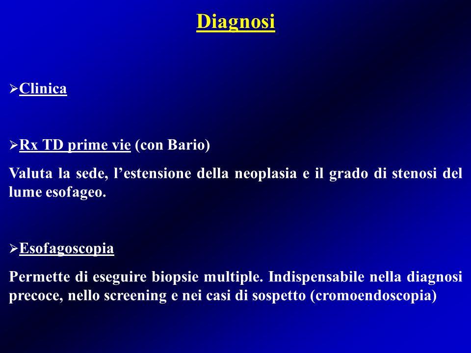 Diagnosi Clinica Rx TD prime vie (con Bario)