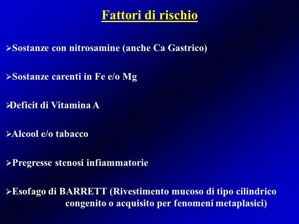 Fattori di rischio Sostanze con nitrosamine (anche Ca Gastrico)
