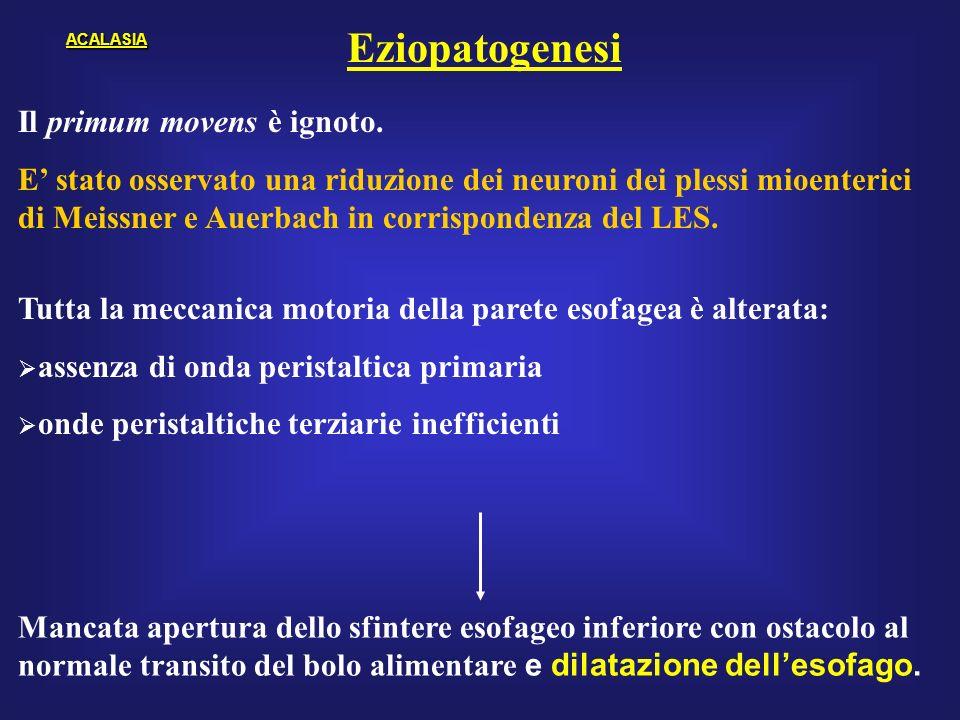 Eziopatogenesi Il primum movens è ignoto.
