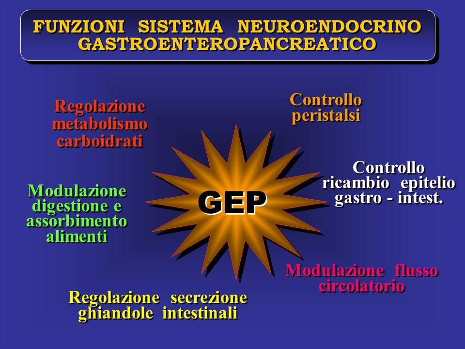 GEP FUNZIONI SISTEMA NEUROENDOCRINO GASTROENTEROPANCREATICO Controllo