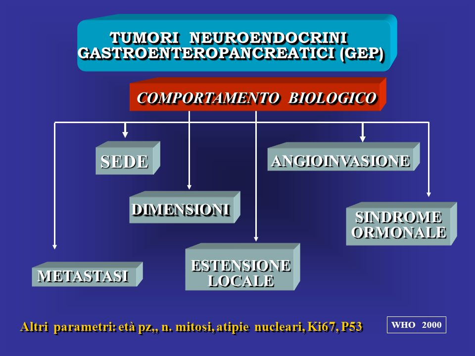 SEDE TUMORI NEUROENDOCRINI GASTROENTEROPANCREATICI (GEP)