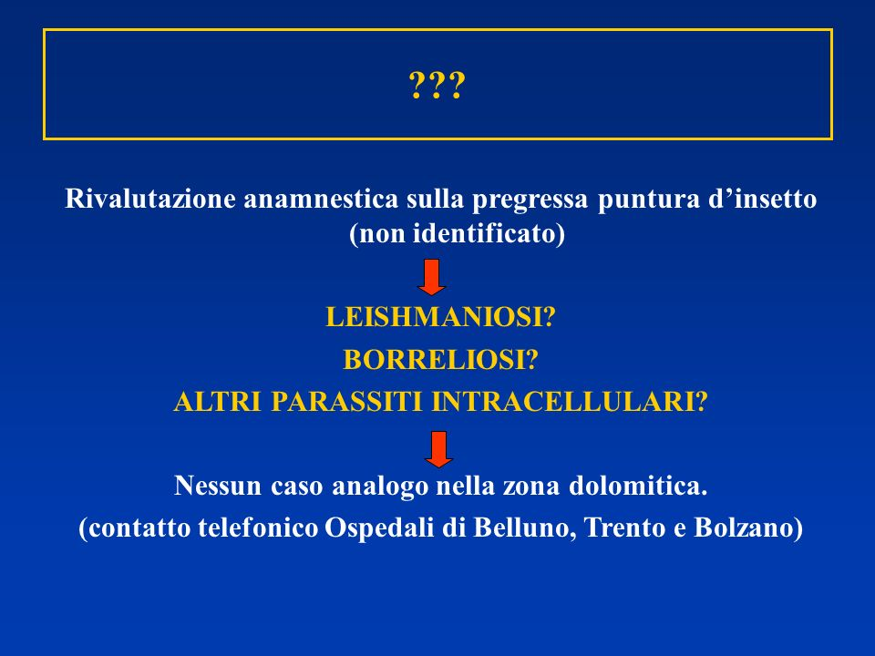 Rivalutazione anamnestica sulla pregressa puntura d'insetto (non identificato) LEISHMANIOSI BORRELIOSI