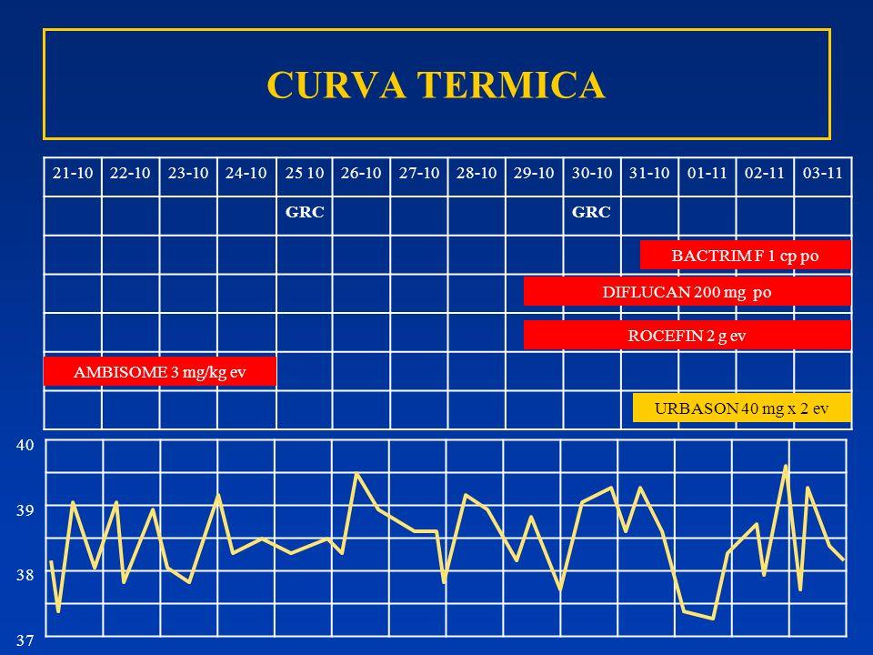 CURVA TERMICA 21-10 22-10 23-10 24-10 25 10 26-10 27-10 28-10 29-10