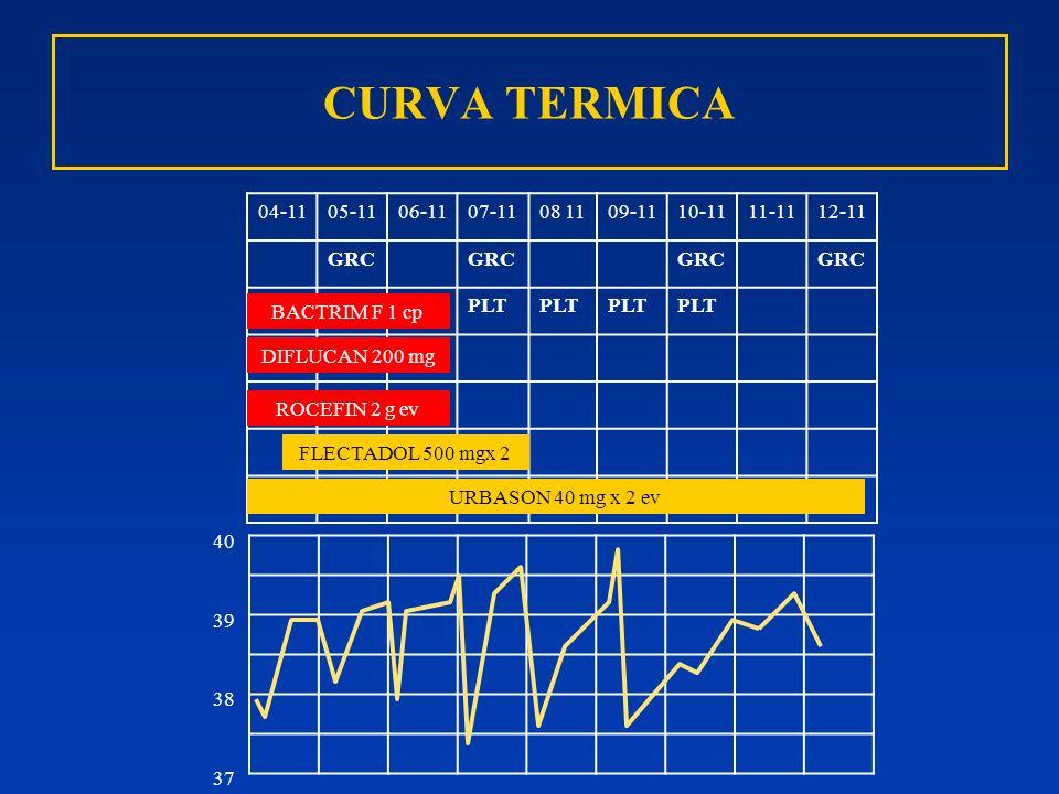 CURVA TERMICA 04-11 05-11 06-11 07-11 08 11 09-11 10-11 11-11 12-11