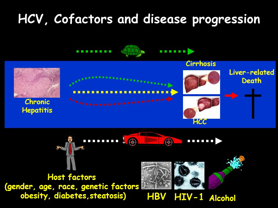 HCV, Cofactors and disease progression