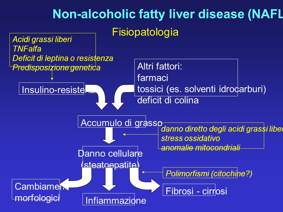 Non-alcoholic fatty liver disease (NAFLD)