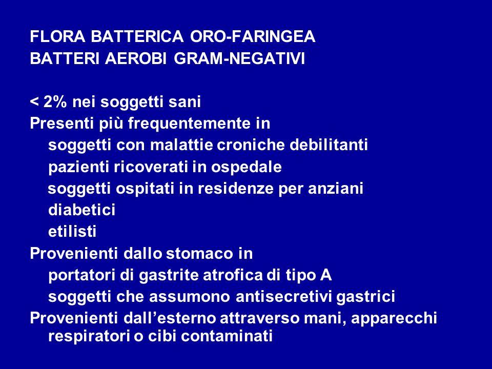 FLORA BATTERICA ORO-FARINGEA