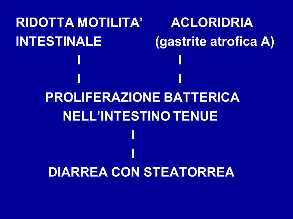 RIDOTTA MOTILITA' ACLORIDRIA