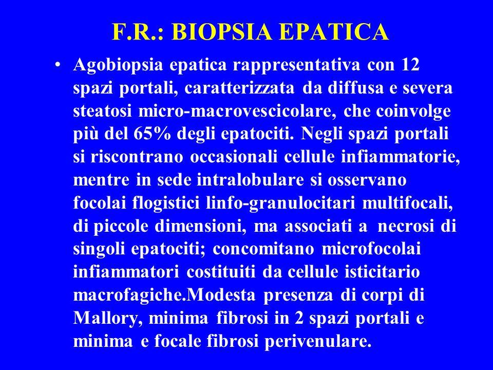 F.R.: BIOPSIA EPATICA