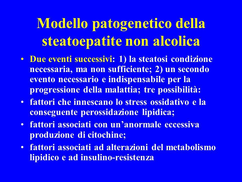 Modello patogenetico della steatoepatite non alcolica