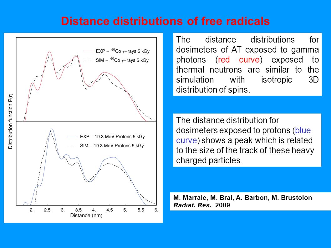Distance distributions of free radicals