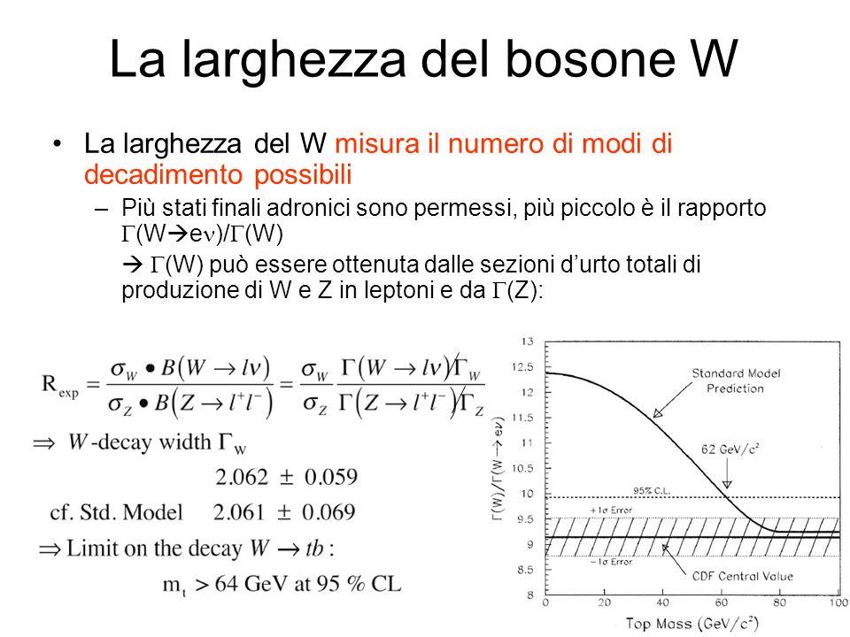 La larghezza del bosone W