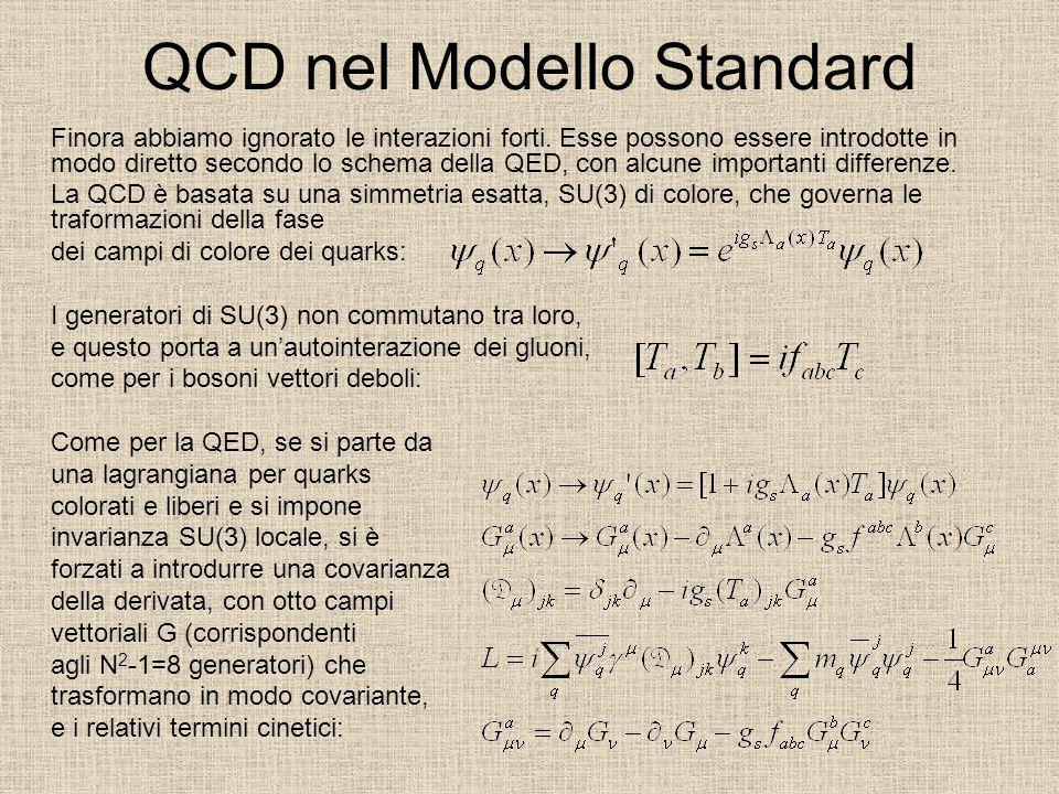 QCD nel Modello Standard