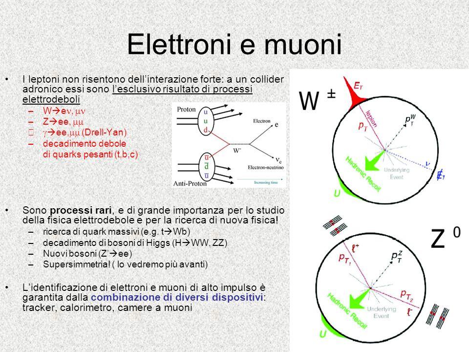 Elettroni e muoni I leptoni non risentono dell'interazione forte: a un collider adronico essi sono l'esclusivo risultato di processi elettrodeboli.