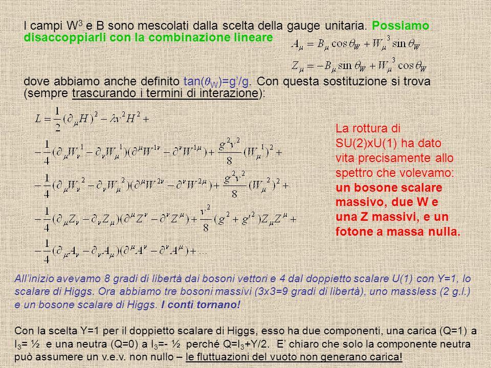 I campi W3 e B sono mescolati dalla scelta della gauge unitaria