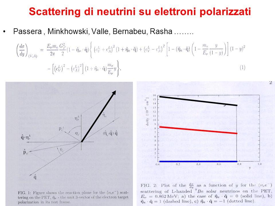 Scattering di neutrini su elettroni polarizzati