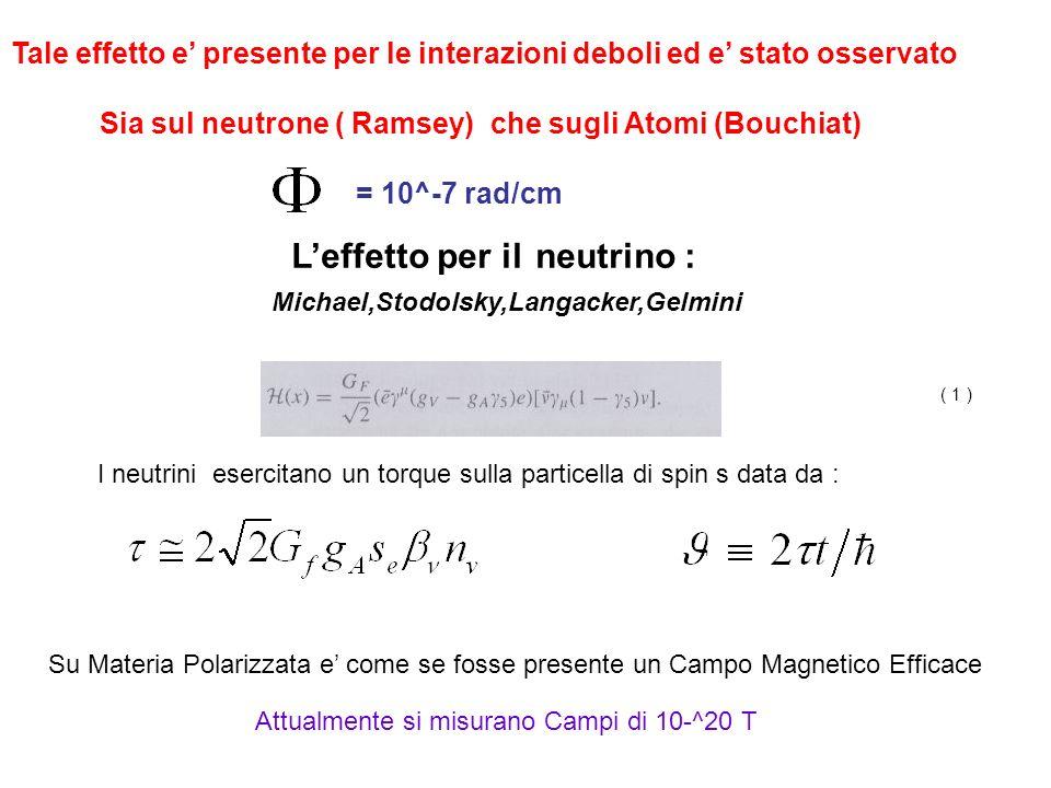 L'effetto per il neutrino : Michael,Stodolsky,Langacker,Gelmini