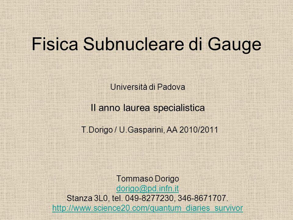 Fisica Subnucleare di Gauge