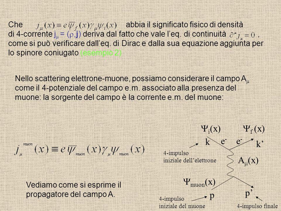 i(x) f (x) k e- e- k' Am(x) muon(x) p' p
