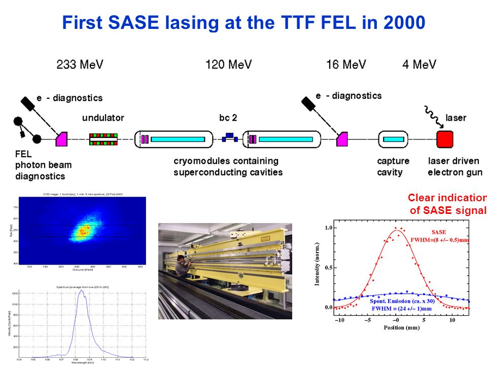 First SASE lasing at the TTF FEL in 2000