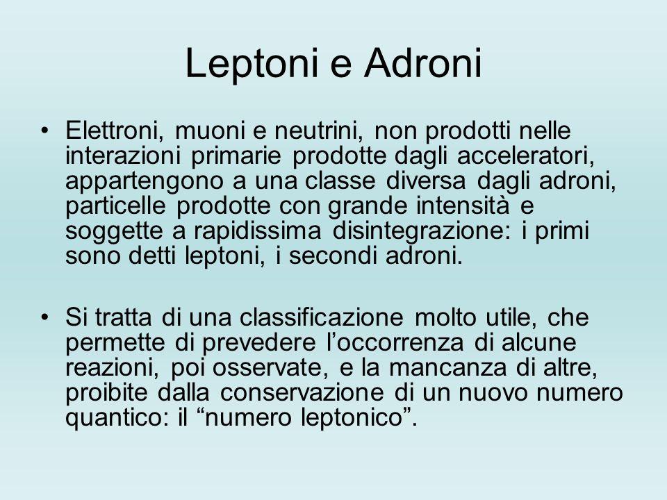 Leptoni e Adroni