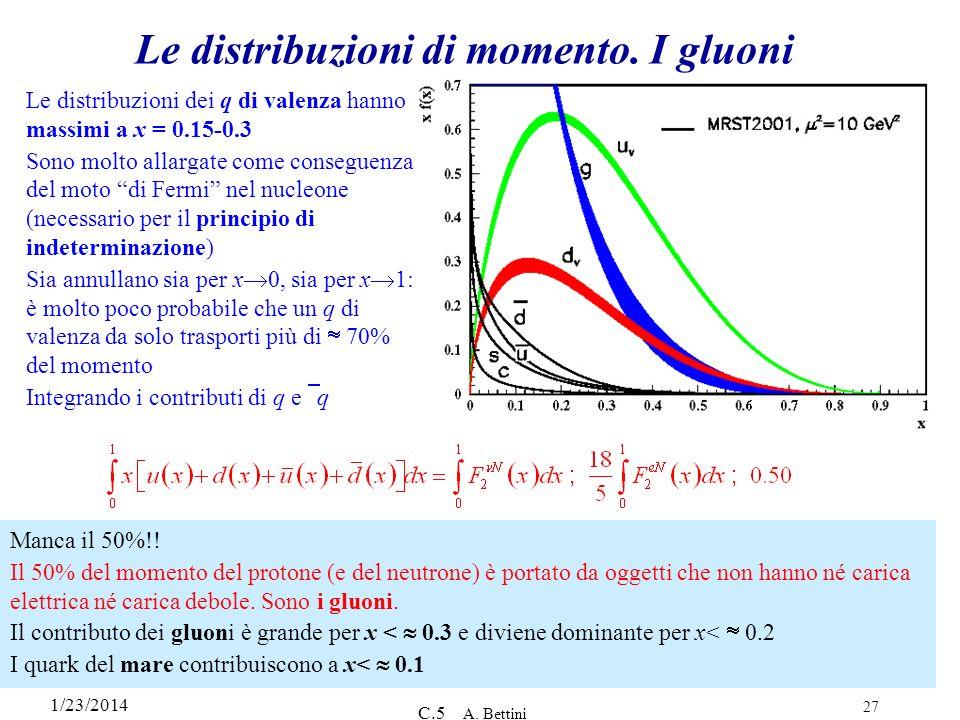 Le distribuzioni di momento. I gluoni