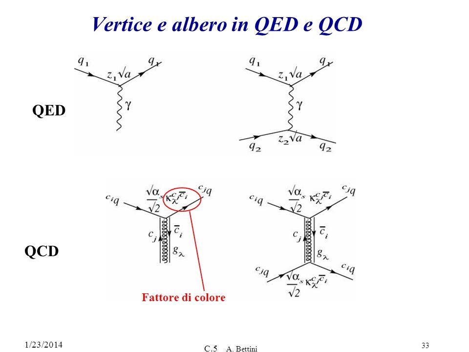 Vertice e albero in QED e QCD