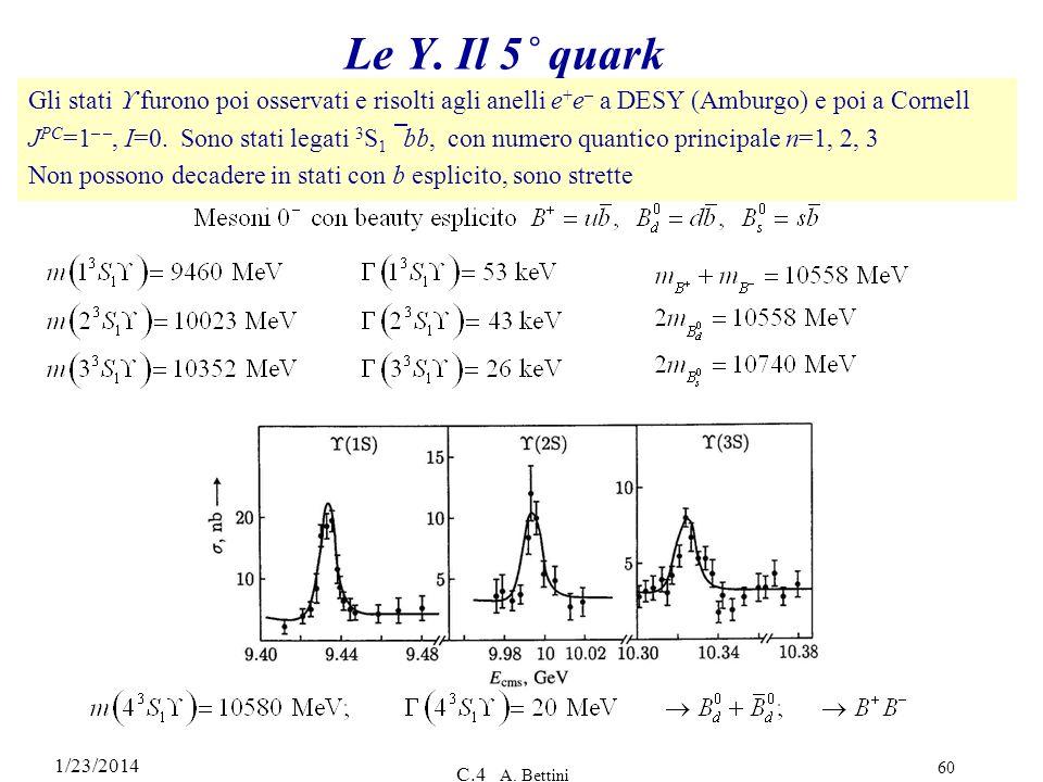 Le Y. Il 5˚ quark Gli stati  furono poi osservati e risolti agli anelli e+e– a DESY (Amburgo) e poi a Cornell.