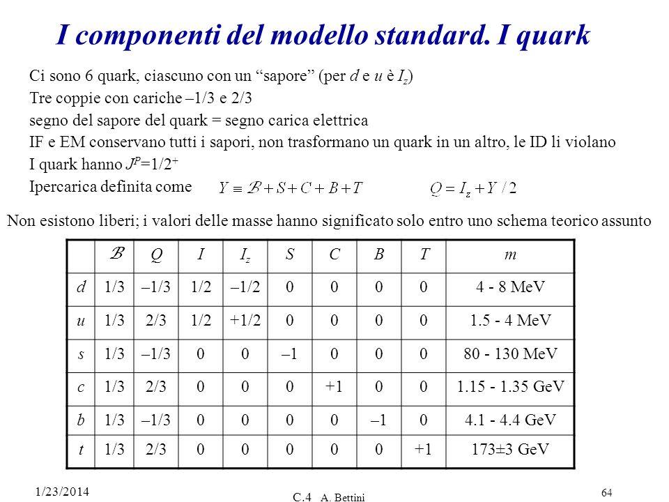 I componenti del modello standard. I quark