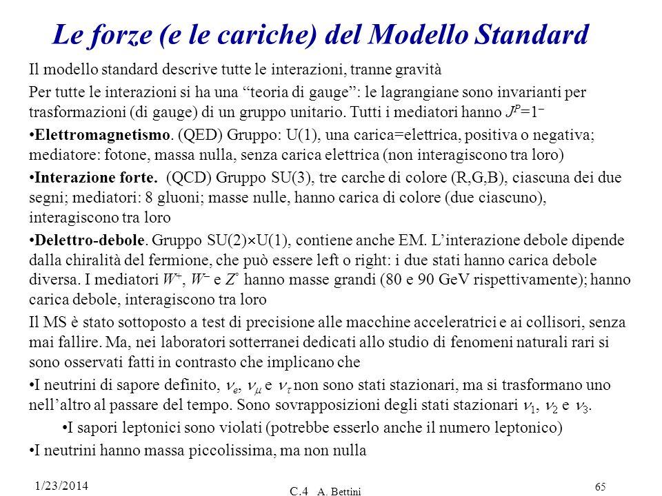 Le forze (e le cariche) del Modello Standard
