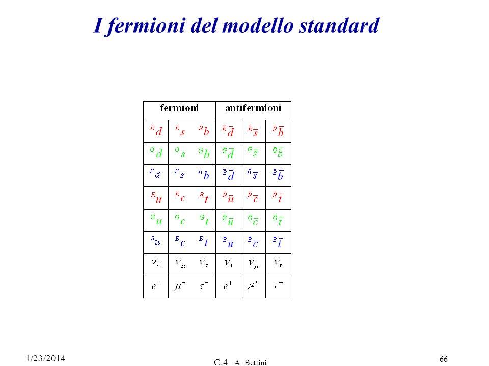 I fermioni del modello standard